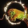 Цирки в Новоуральске